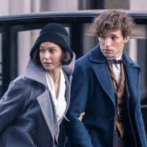 rs_600x600-160206075025-600-fantastic-beasts-and-where-to-find-them-newt-scamander-eddie-redmayne-movie-still-2616